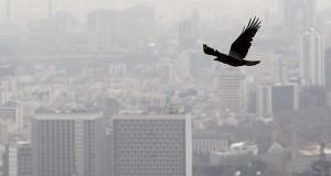 تعطیلی راهی برای مقابله با آلودگی هوا!