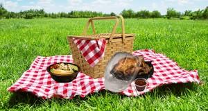 مراقب مسمومیت غذاهای بینراهی باشید