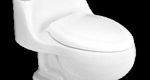 طریقه ی استفاده از توالت فرنگی