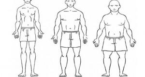 انواع مختلف تیپ های بدنی و ورزش های مناسب برای آنها