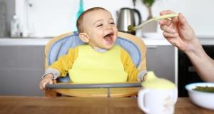 آشنایی با ۴ نوع اصلی صندلی غذا و تفاوت آن ها
